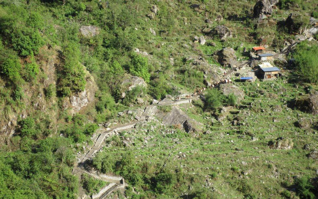 Resilient Rehabilitation of Trails in Highly Affected Communities of Gorkha and Rasuwa