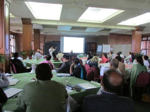 Support to NPTF Strategy Development (Workshop & Support to Task Force)