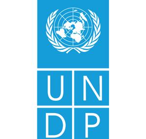 UNDP2